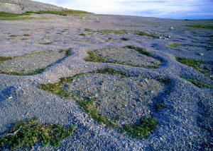 Surreal terrain of Burnt Cape