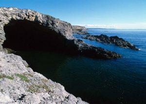 Whale Cove Marine Cave