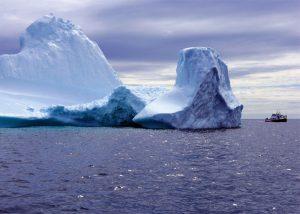 Memorable Iceberg Watching